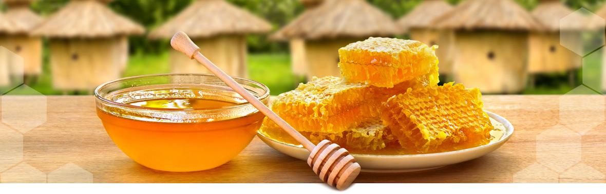 Алтайский горный мед